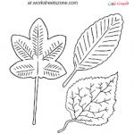 نشاط عن النباتات للاطفال  انشطة أوراق الشجر