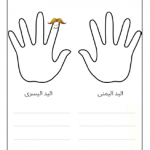 ورقة عمل عن اليد لرياض الأطفال والصف الأول